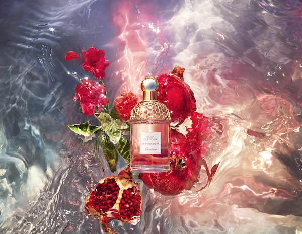 新品圆舞榴光的加入为花草水语这座奇妙自然花园再添几份夏日浪漫气息